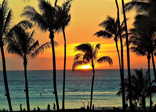 LAWKI - Hawaii Would Love to Have You - 515